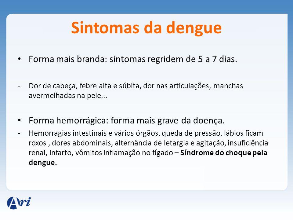 Sintomas da dengue Forma mais branda: sintomas regridem de 5 a 7 dias. -Dor de cabeça, febre alta e súbita, dor nas articulações, manchas avermelhadas