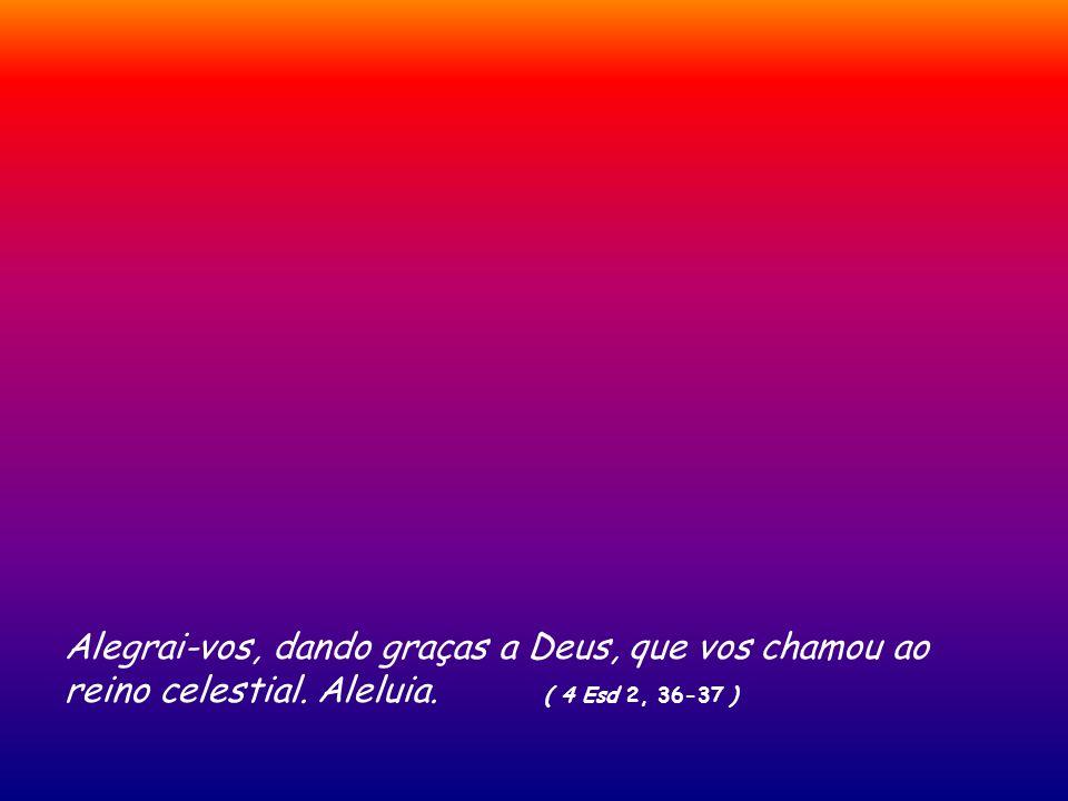 Amanhecer em Jerusalém desde o monte das Oliveiras com uma boa teleobjectiva. ( Del santo evangelho segundo S. João ) Jo 20, 19-31 Na tarde daquele di