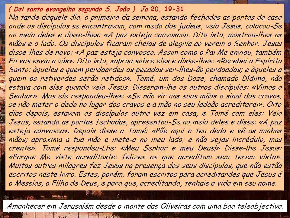 ALELUIA Jo 20, 29 ALELUIA Jo 20, 29 Disse o Senhor a Tomé: «Porque me viste, acreditaste; felizes os que acreditam sem terem visto».