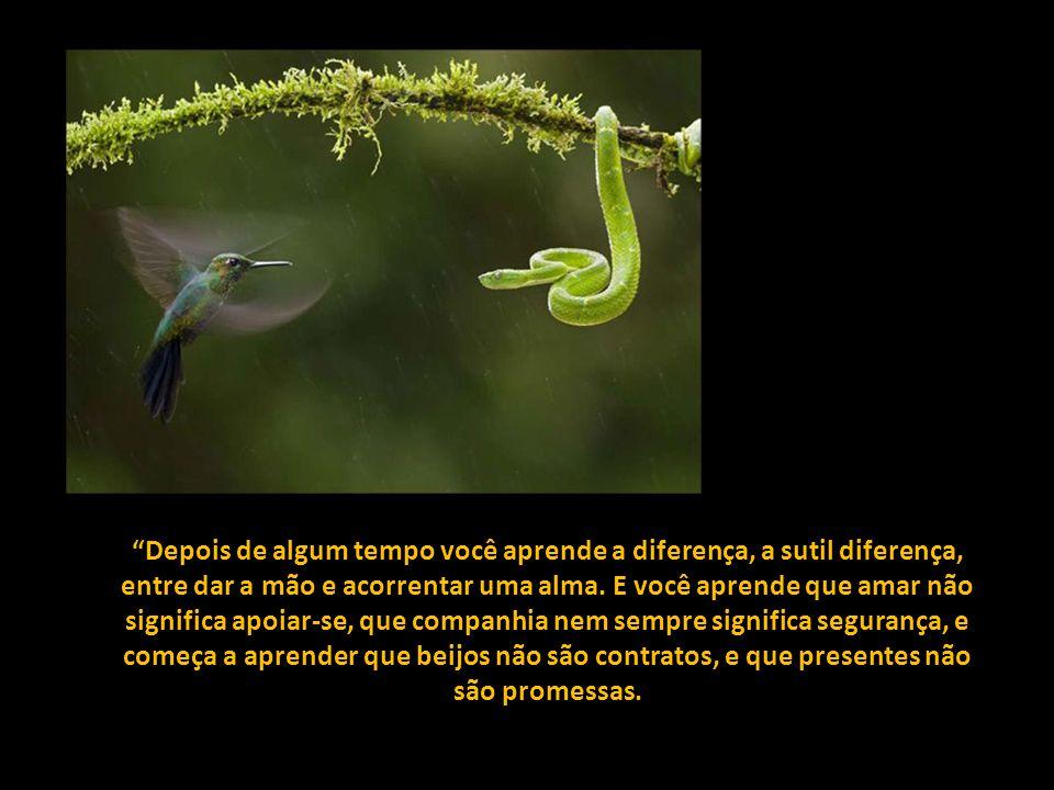Depois de algum tempo você aprende a diferença, a sutil diferença, entre dar a mão e acorrentar uma alma.