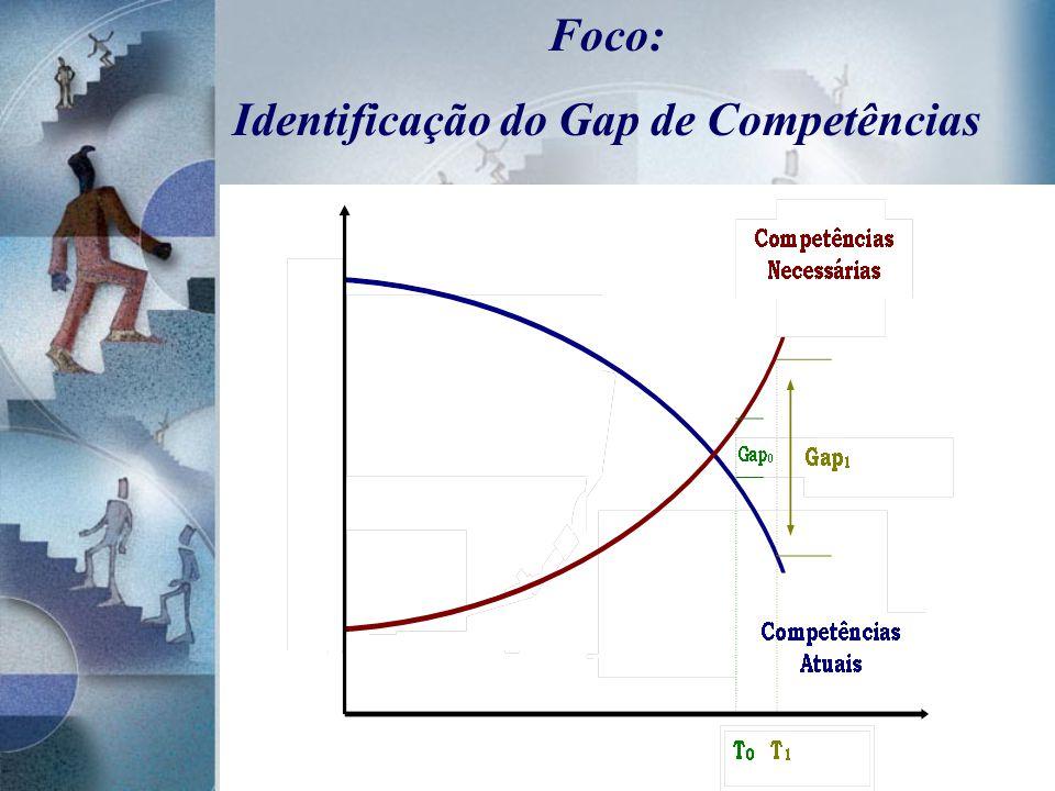Foco: Identificação do Gap de Competências