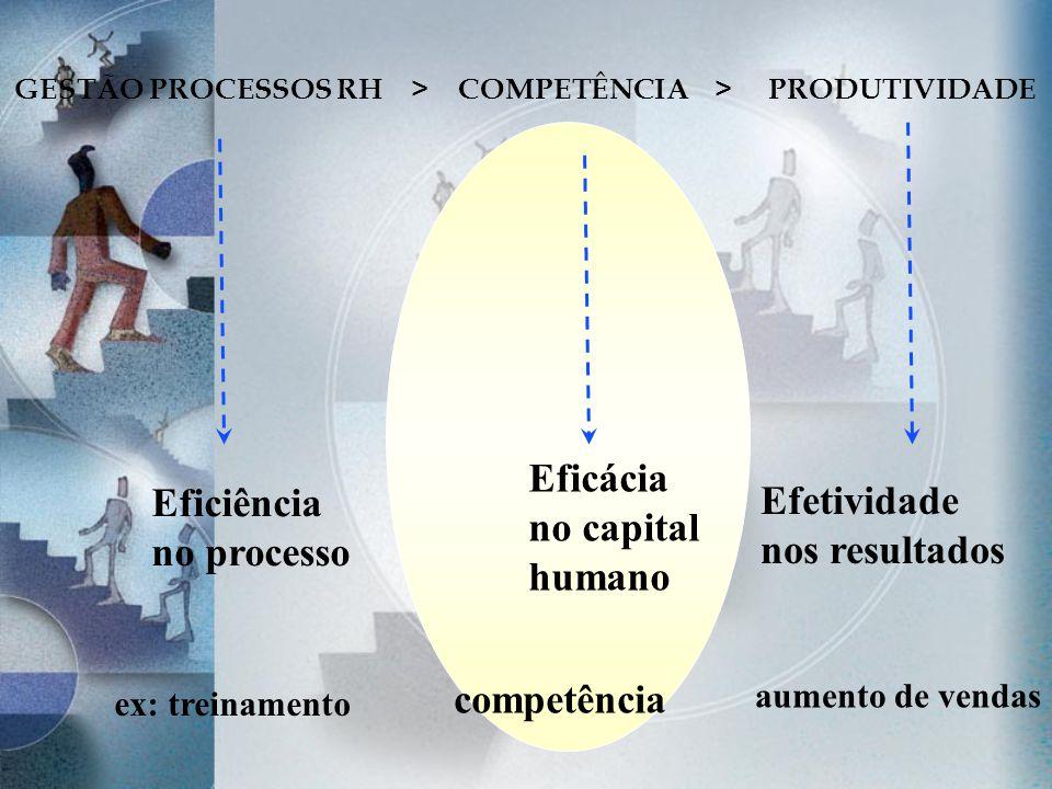GESTÃO PROCESSOS RH > COMPETÊNCIA > PRODUTIVIDADE Eficiência no processo Eficácia no capital humano Efetividade nos resultados ex: treinamento competê