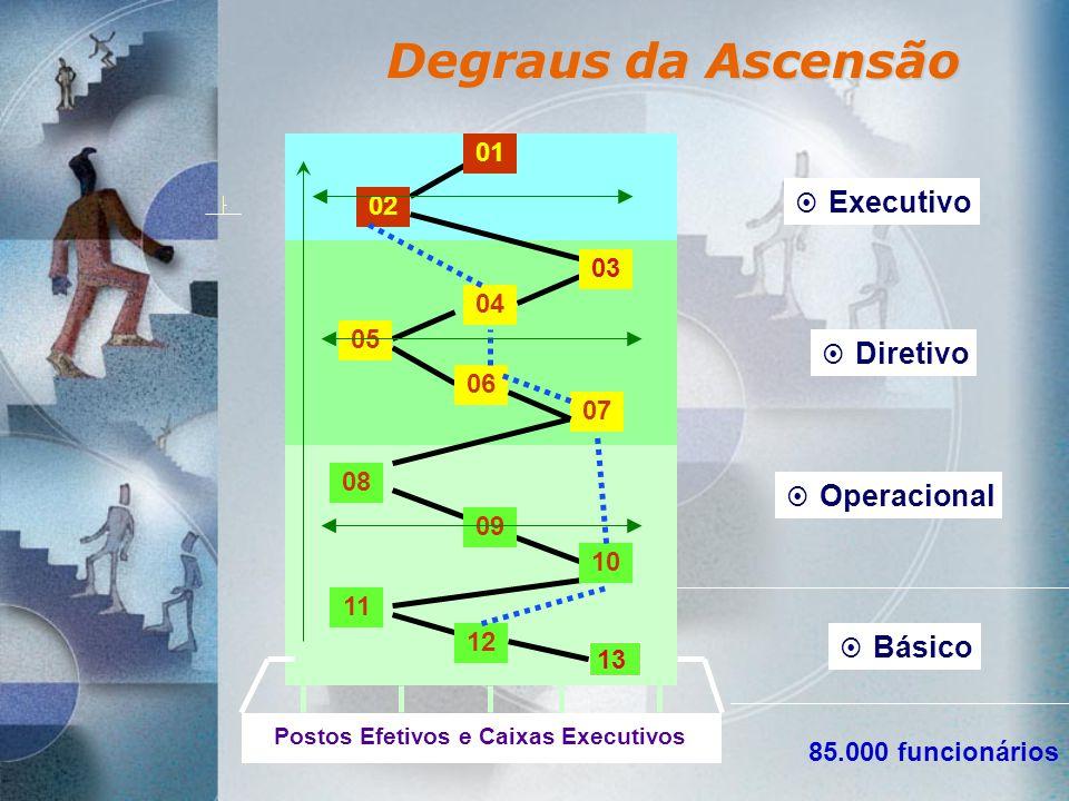 Degraus da Ascensão 01 02 03 04 05 06 07 08 09 10 11 12 Executivo Diretivo Operacional Postos Efetivos e Caixas Executivos 13 Básico 85.000 funcionári