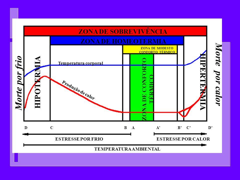 ZONA DE SOBREVIVÊNCIA ZONA DE HOMEOTERMIA ZONA DE MODESTO CONFORTO TÉRMICO ZONA DE CONFORTO TÉRMICO Temperatura corporal HIPERTERMIA HIPOTERMIA Morte