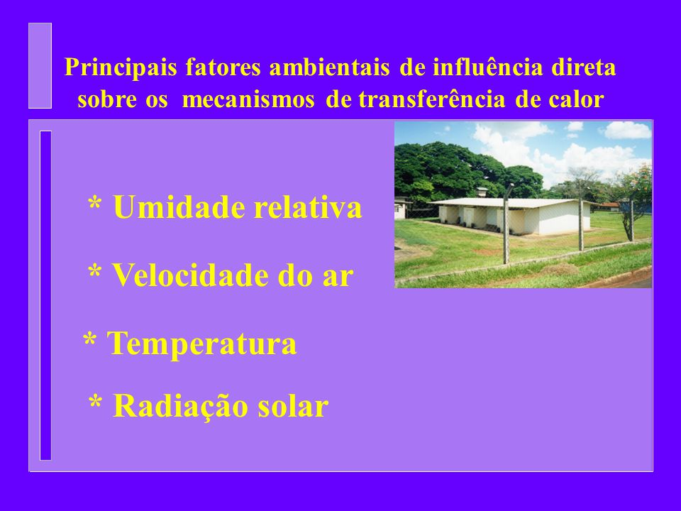 Principais fatores ambientais de influência direta sobre os mecanismos de transferência de calor * Temperatura * Umidade relativa * Velocidade do ar *
