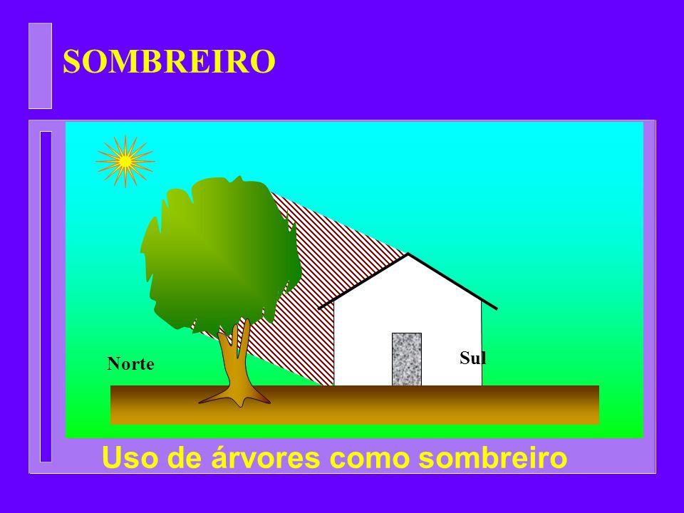 SOMBREIRO Norte Sul Uso de árvores como sombreiro