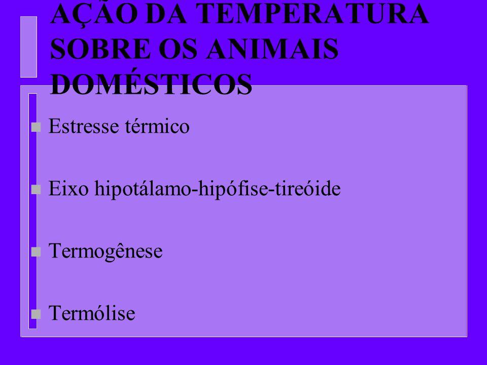 AÇÃO DA TEMPERATURA SOBRE OS ANIMAIS DOMÉSTICOS n Estresse térmico n Eixo hipotálamo-hipófise-tireóide n Termogênese n Termólise