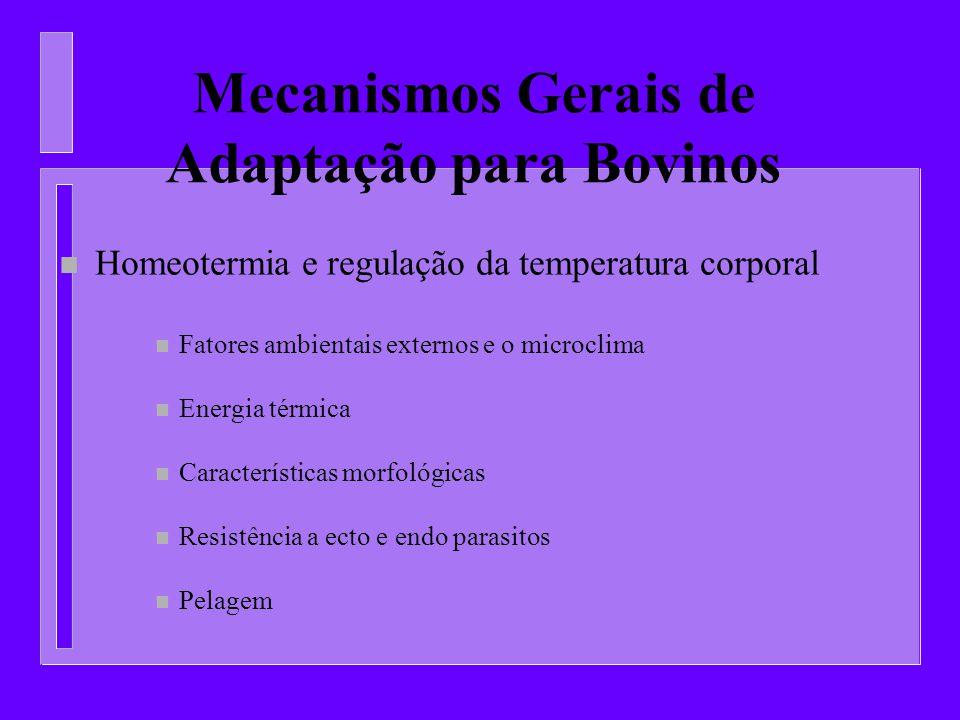 Mecanismos Gerais de Adaptação para Bovinos n Homeotermia e regulação da temperatura corporal n Fatores ambientais externos e o microclima n Energia t