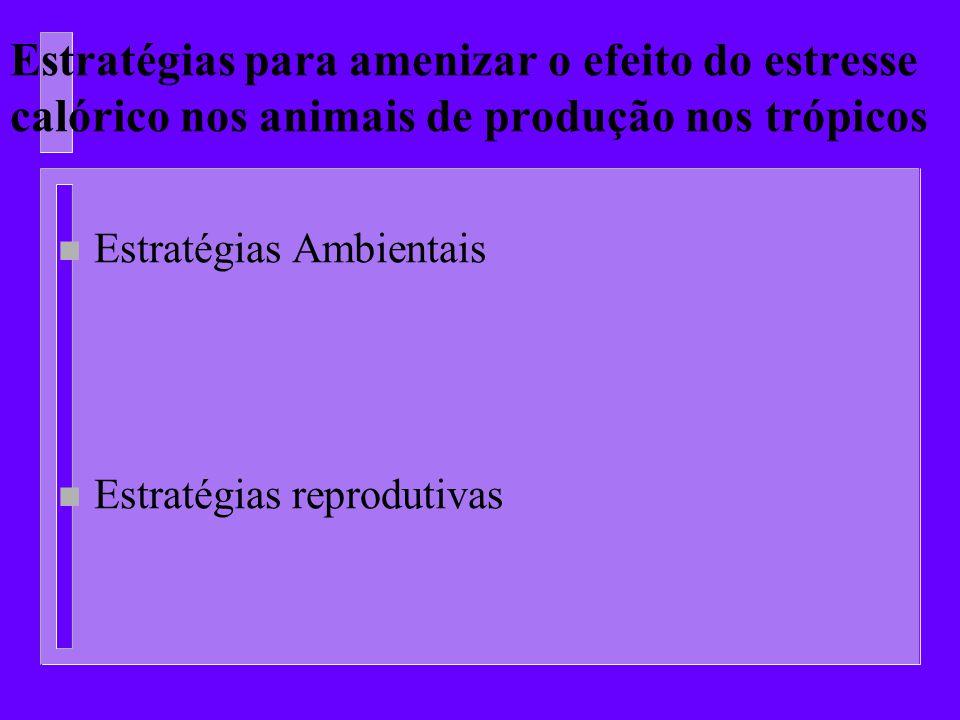 Estratégias para amenizar o efeito do estresse calórico nos animais de produção nos trópicos n Estratégias Ambientais n Estratégias reprodutivas
