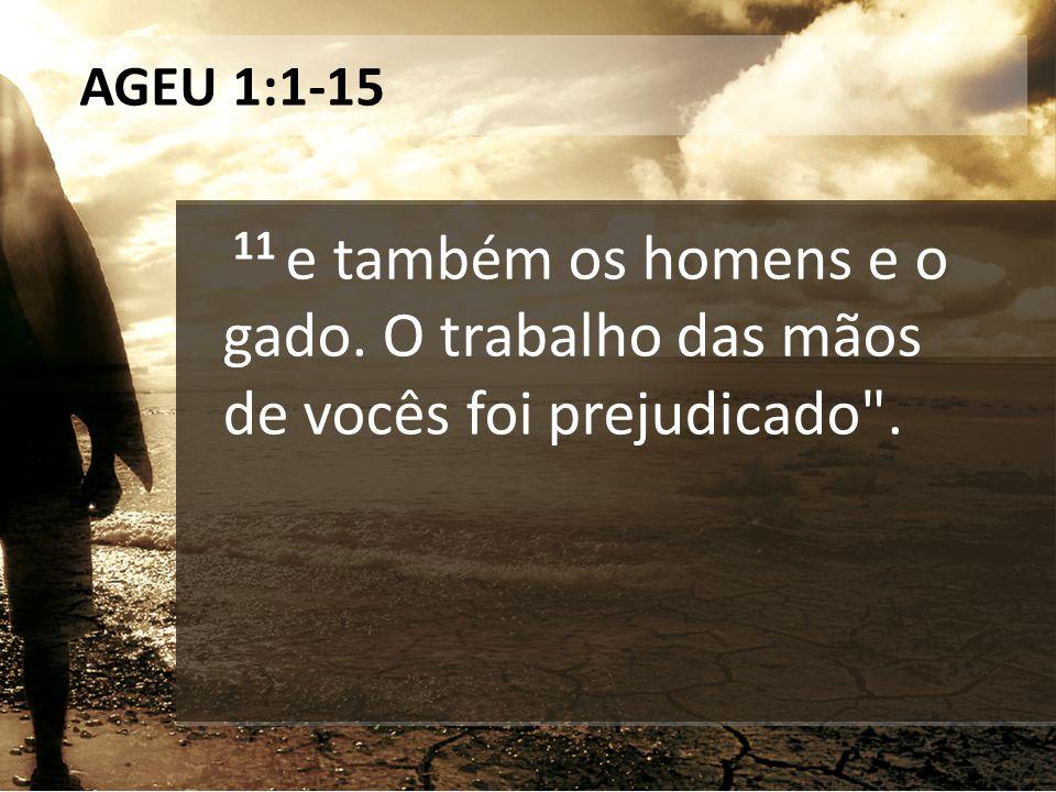 AGEU 1:1-15 11 e também os homens e o gado. O trabalho das mãos de vocês foi prejudicado