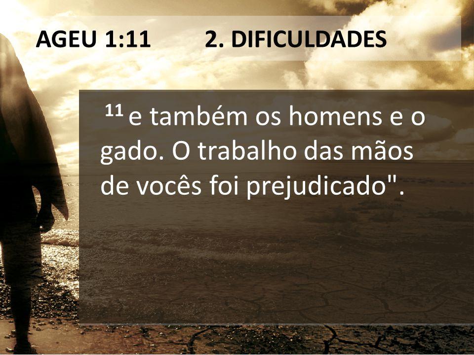 AGEU 1:11 2. DIFICULDADES 11 e também os homens e o gado. O trabalho das mãos de vocês foi prejudicado