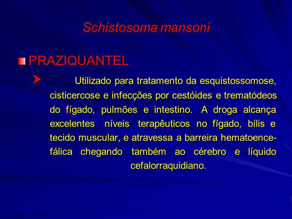 Schistosoma mansoni PRAZIQUANTEL Utilizado para tratamento da esquistossomose, Utilizado para tratamento da esquistossomose, cisticercose e infecções