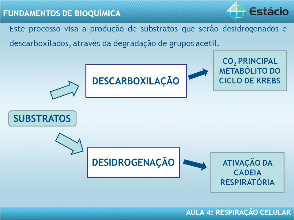 AULA 4: RESPIRAÇÃO CELULAR FUNDAMENTOS DE BIOQUÍMICA Este processo visa a produção de substratos que serão desidrogenados e descarboxilados, através d