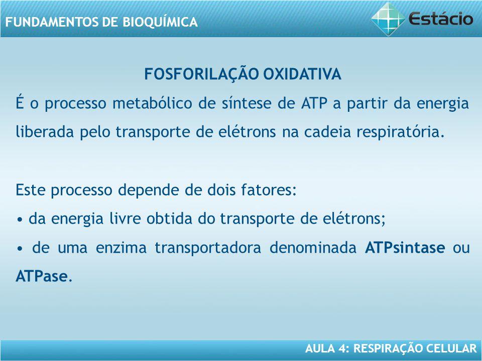 AULA 4: RESPIRAÇÃO CELULAR FUNDAMENTOS DE BIOQUÍMICA FOSFORILAÇÃO OXIDATIVA É o processo metabólico de síntese de ATP a partir da energia liberada pel
