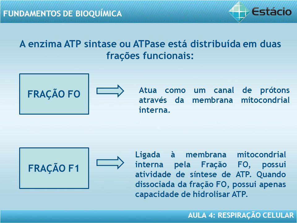 AULA 4: RESPIRAÇÃO CELULAR FUNDAMENTOS DE BIOQUÍMICA A enzima ATP sintase ou ATPase está distribuída em duas frações funcionais: FRAÇÃO FO Atua como u
