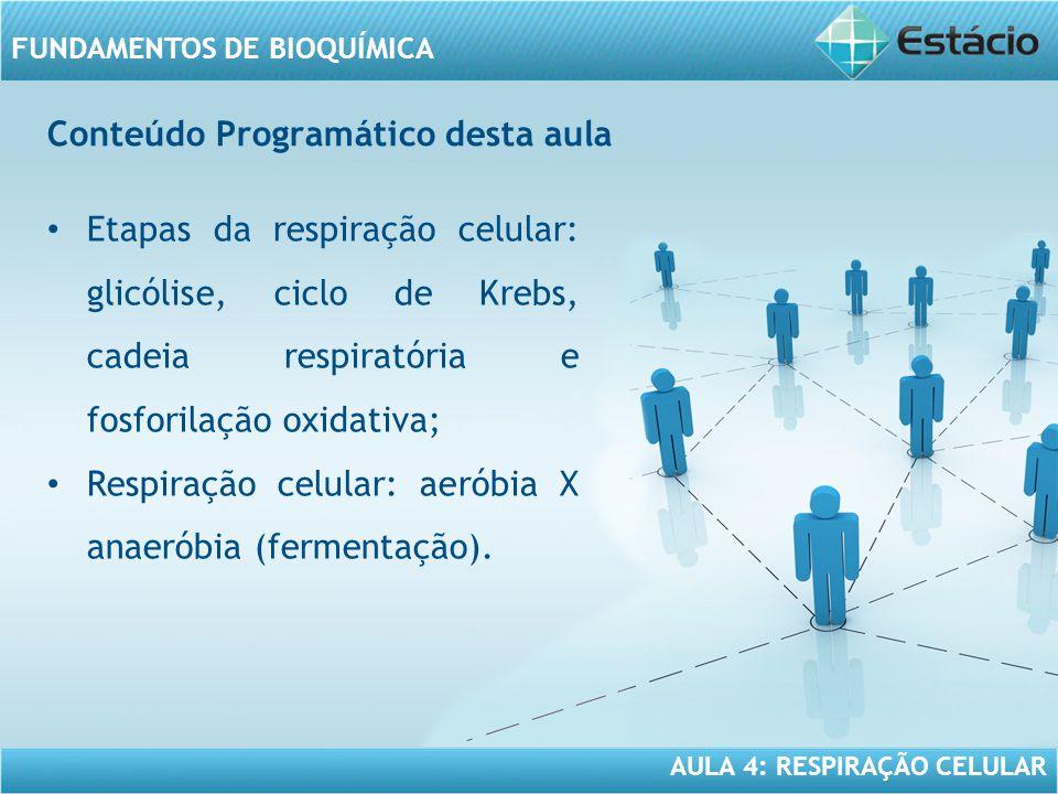 AULA 4: RESPIRAÇÃO CELULAR FUNDAMENTOS DE BIOQUÍMICA Resumindo Etapas da respiração celular: glicólise, ciclo de krebs, cadeia respiratória e fosforilação oxidativa; Respiração celular: aeróbia x anaeróbia (fermentação); Fermentação alcóolica; Fermentação láctica.
