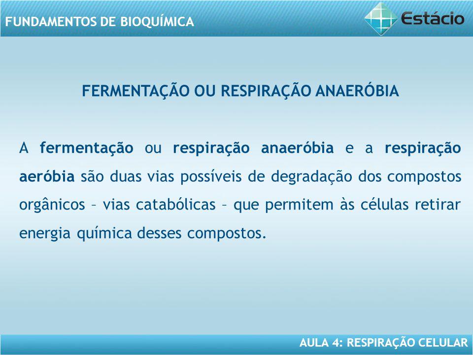 AULA 4: RESPIRAÇÃO CELULAR FUNDAMENTOS DE BIOQUÍMICA FERMENTAÇÃO OU RESPIRAÇÃO ANAERÓBIA A fermentação ou respiração anaeróbia e a respiração aeróbia