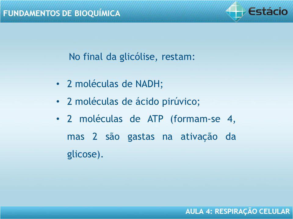 AULA 4: RESPIRAÇÃO CELULAR FUNDAMENTOS DE BIOQUÍMICA 2 moléculas de NADH; 2 moléculas de ácido pirúvico; 2 moléculas de ATP (formam-se 4, mas 2 são ga