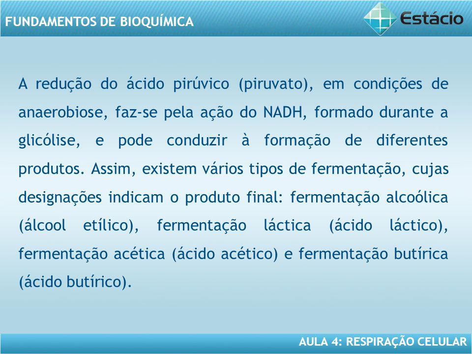 AULA 4: RESPIRAÇÃO CELULAR FUNDAMENTOS DE BIOQUÍMICA A redução do ácido pirúvico (piruvato), em condições de anaerobiose, faz-se pela ação do NADH, fo