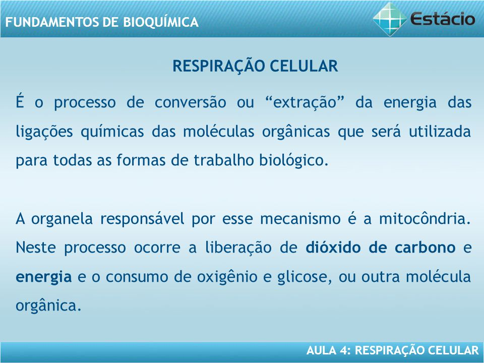 AULA 4: RESPIRAÇÃO CELULAR FUNDAMENTOS DE BIOQUÍMICA É o processo de conversão ou extração da energia das ligações químicas das moléculas orgânicas qu