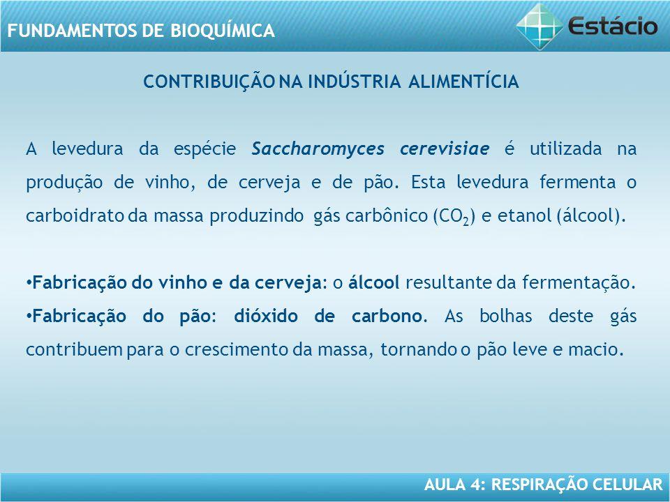 AULA 4: RESPIRAÇÃO CELULAR FUNDAMENTOS DE BIOQUÍMICA CONTRIBUIÇÃO NA INDÚSTRIA ALIMENTÍCIA A levedura da espécie Saccharomyces cerevisiae é utilizada