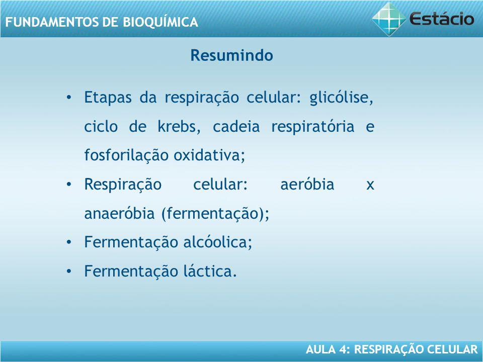 AULA 4: RESPIRAÇÃO CELULAR FUNDAMENTOS DE BIOQUÍMICA Resumindo Etapas da respiração celular: glicólise, ciclo de krebs, cadeia respiratória e fosforil