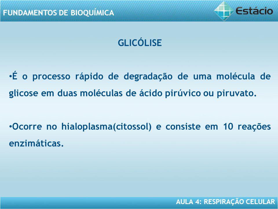 AULA 4: RESPIRAÇÃO CELULAR FUNDAMENTOS DE BIOQUÍMICA GLICÓLISE É o processo rápido de degradação de uma molécula de glicose em duas moléculas de ácido
