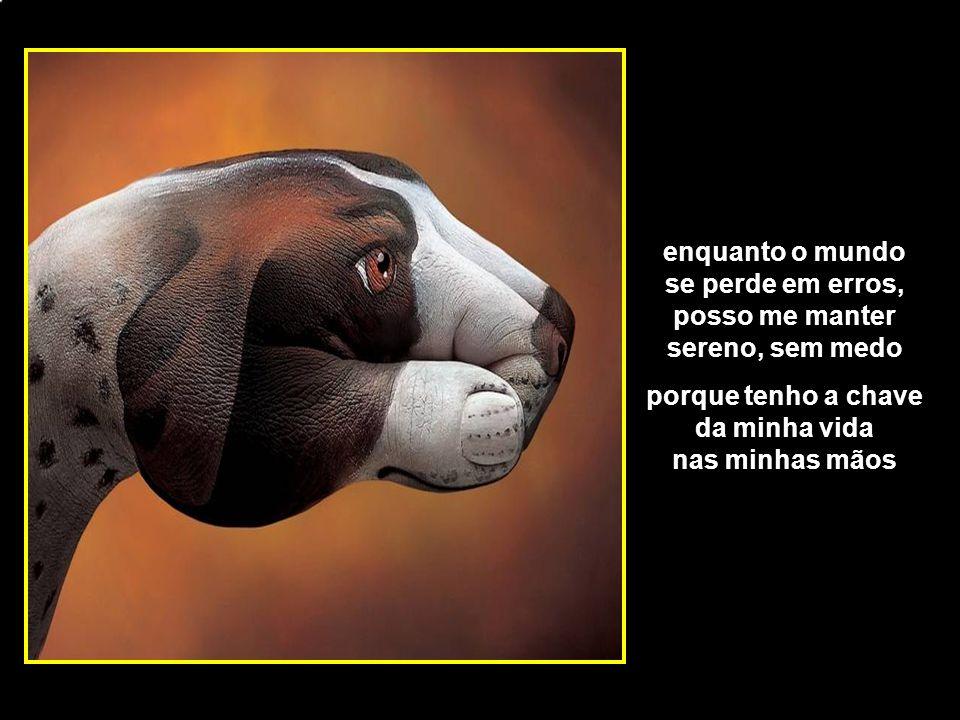 adao-las@ig.com.br enquanto o mundo se perde em erros, posso me manter sereno, sem medo porque tenho a chave da minha vida nas minhas mãos