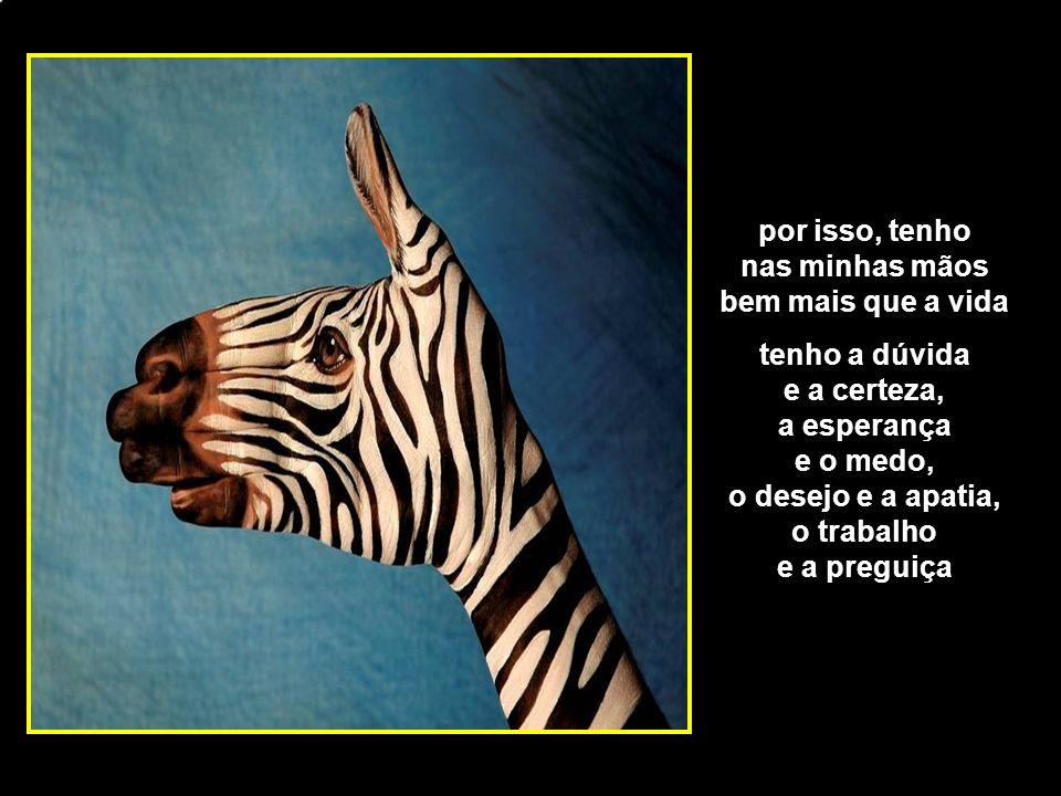 adao-las@ig.com.br atravessei caminhos nem sempre floridos, que deixaram marcas profundas em mim mas amei e fui amado
