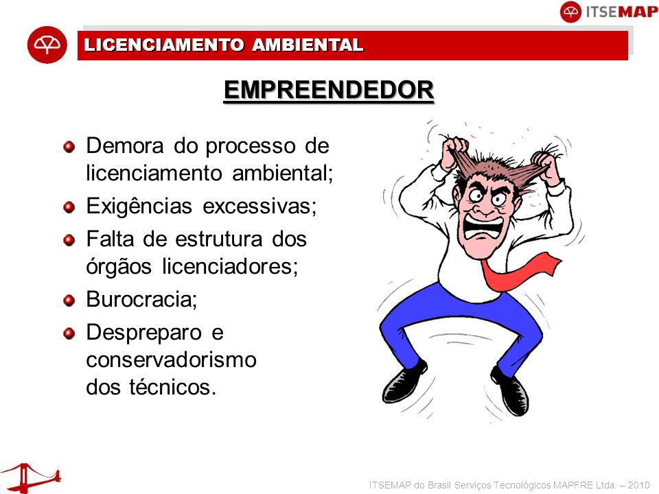 ITSEMAP do Brasil Serviços Tecnológicos MAPFRE Ltda. – 2010 LICENCIAMENTO AMBIENTAL Demora do processo de licenciamento ambiental; Exigências excessiv