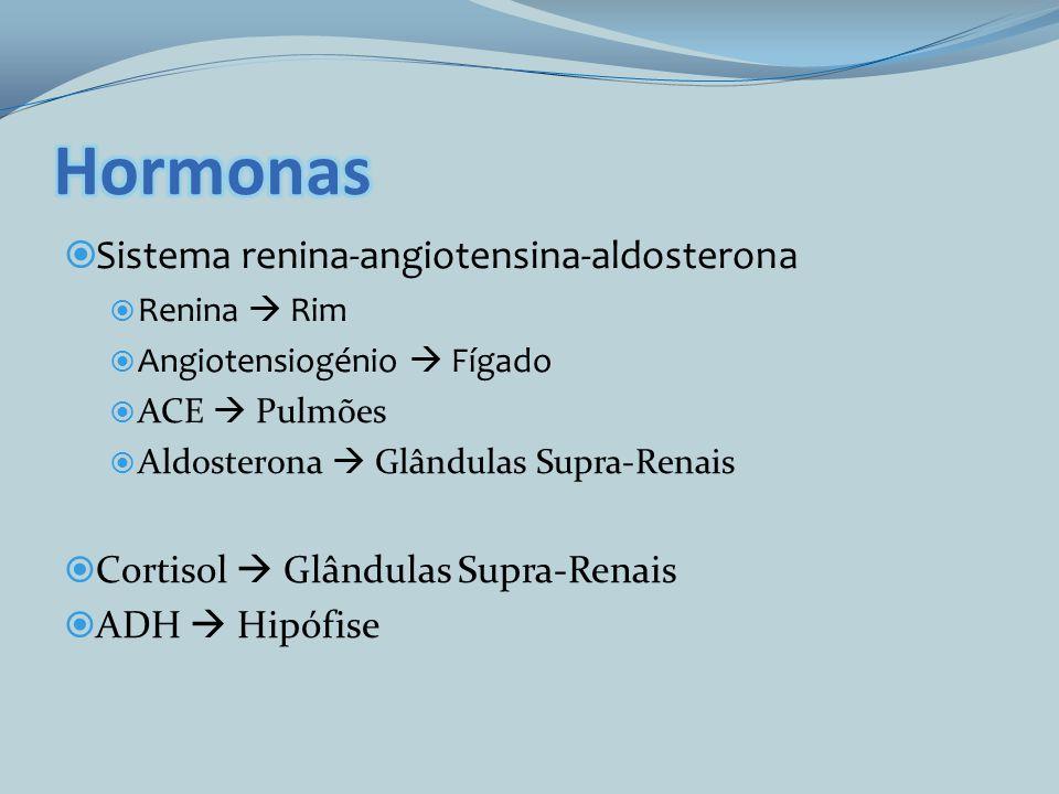 Sistema renina-angiotensina-aldosterona Renina Rim Angiotensiogénio Fígado ACE Pulmões Aldosterona Glândulas Supra-Renais Cortisol Glândulas Supra-Ren
