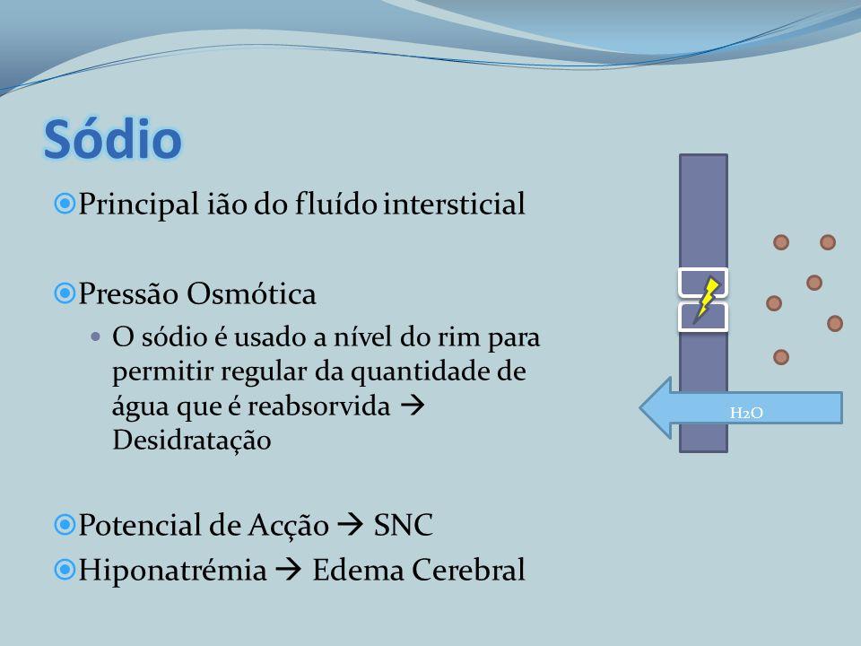 Principal ião do fluído intersticial Pressão Osmótica O sódio é usado a nível do rim para permitir regular da quantidade de água que é reabsorvida Des