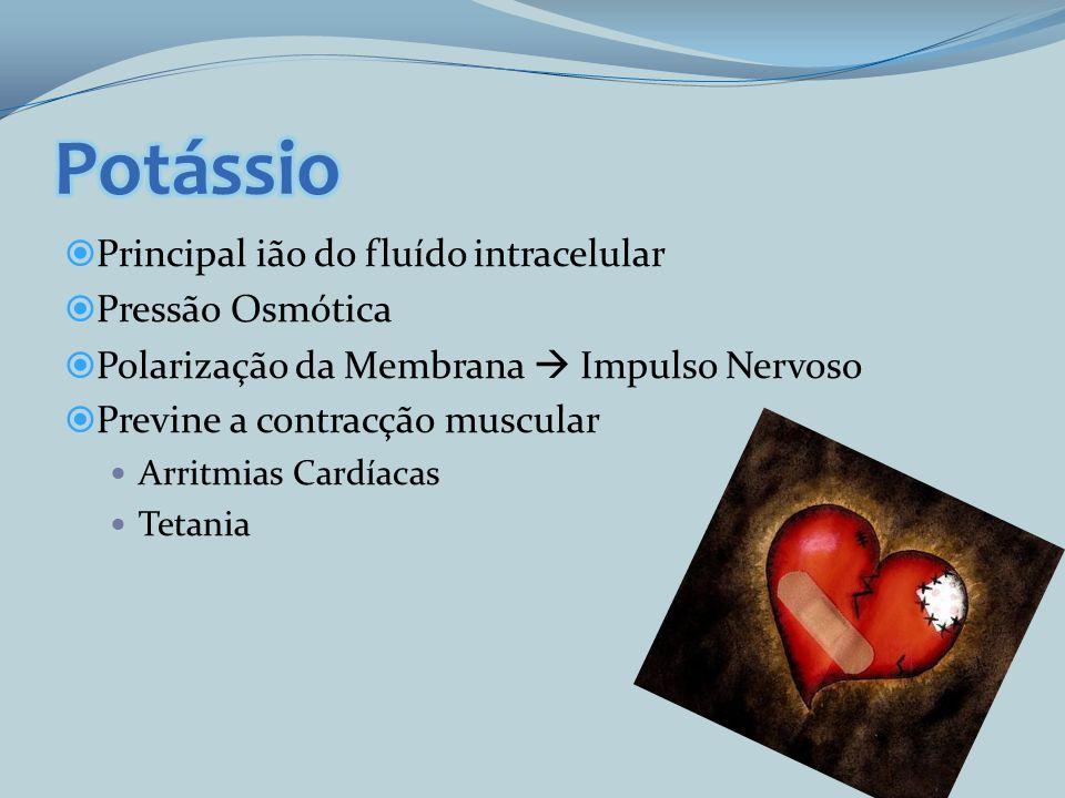 Principal ião do fluído intracelular Pressão Osmótica Polarização da Membrana Impulso Nervoso Previne a contracção muscular Arritmias Cardíacas Tetani