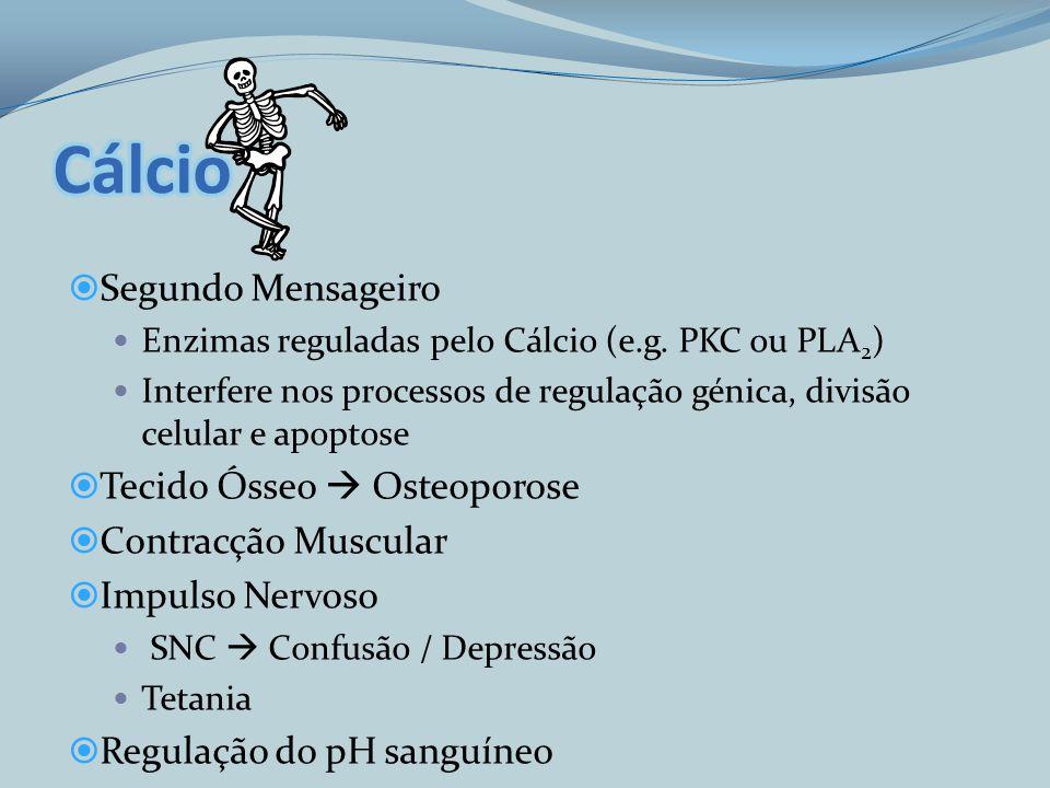 Segundo Mensageiro Enzimas reguladas pelo Cálcio (e.g. PKC ou PLA 2 ) Interfere nos processos de regulação génica, divisão celular e apoptose Tecido Ó
