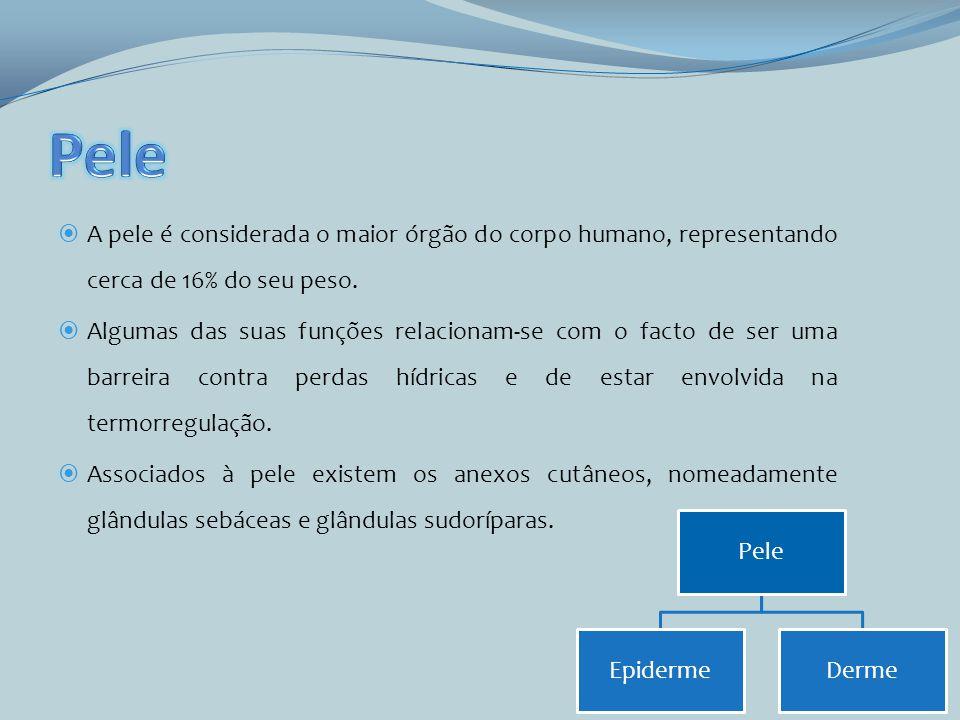 www.uff.br/mmi/neonatologia/graduacao/bloco%20teorico/hidratacao/agua.