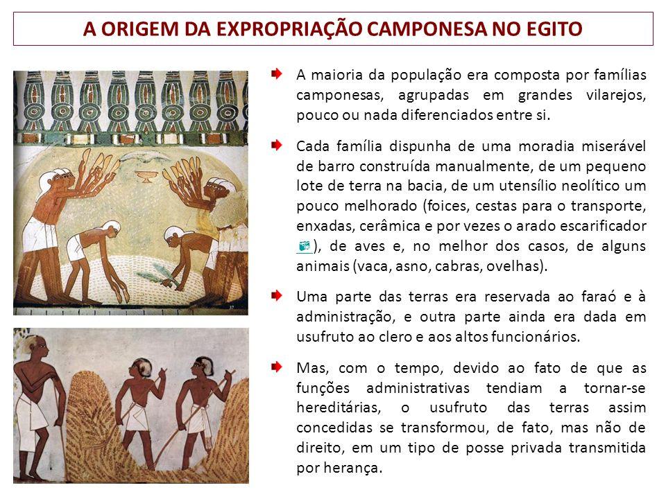 A ORIGEM DA EXPROPRIAÇÃO CAMPONESA NO EGITO A maioria da população era composta por famílias camponesas, agrupadas em grandes vilarejos, pouco ou nada diferenciados entre si.
