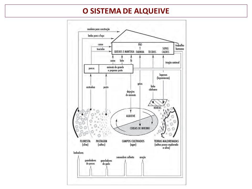 O SISTEMA DE ALQUEIVE