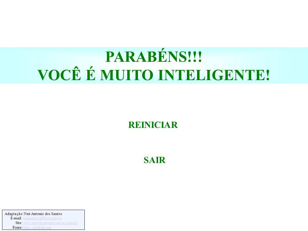 Adaptação: Neri Antonio dos Santos E-mail: nerisantos@ibest.com.brnerisantos@ibest.com.br Site: www.atividadeseducativas.com.brwww.atividadeseducativas.com.br Fonte: http://pbskids.orghttp://pbskids.org PARABÉNS!!.