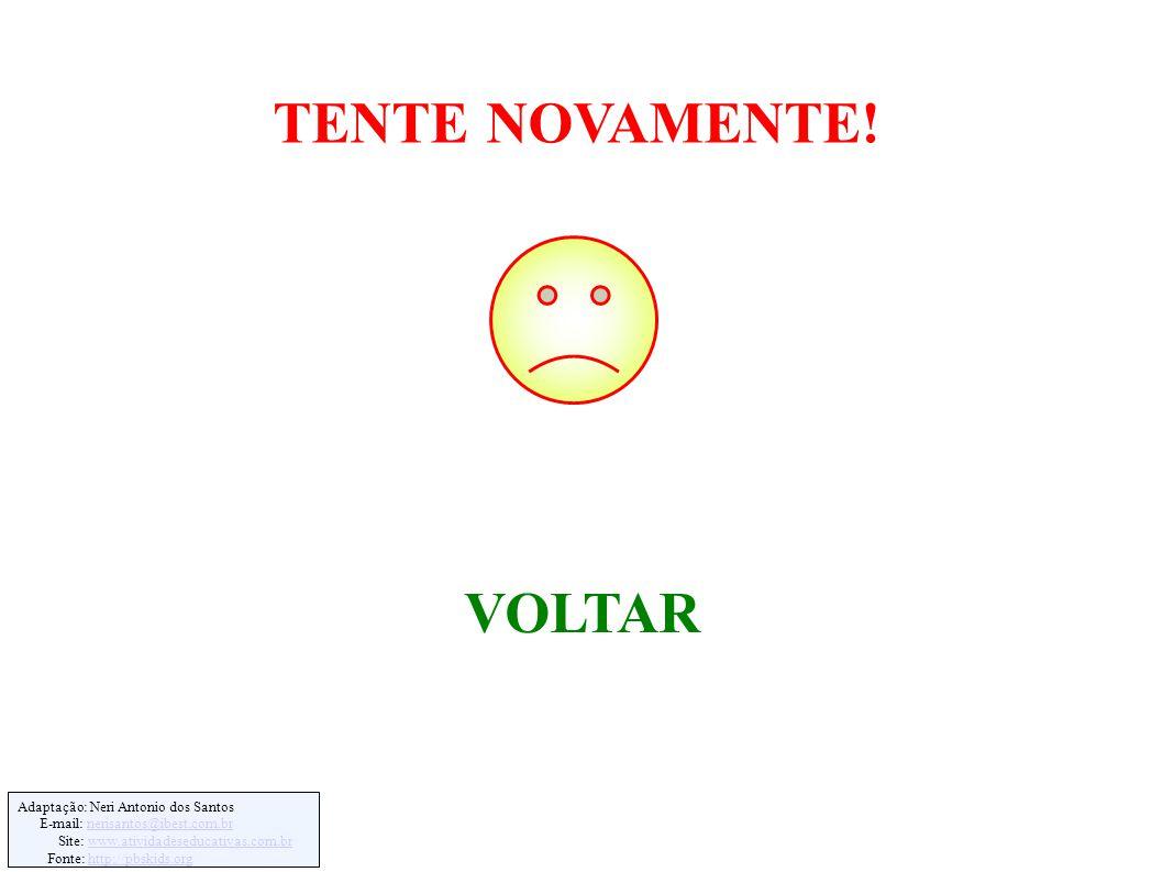Adaptação: Neri Antonio dos Santos E-mail: nerisantos@ibest.com.brnerisantos@ibest.com.br Site: www.atividadeseducativas.com.brwww.atividadeseducativas.com.br Fonte: http://pbskids.orghttp://pbskids.org VOLTAR TENTE NOVAMENTE!