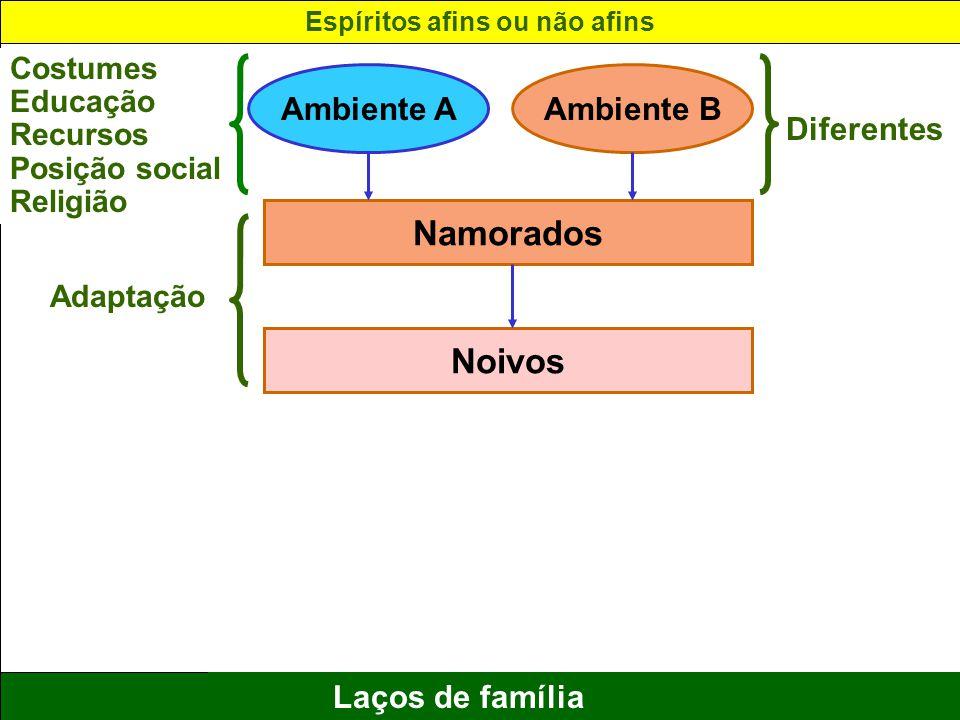12 Laços de família Ambiente AAmbiente B Namorados Noivos Costumes Educação Recursos Posição social Religião Adaptação Diferentes Espíritos afins ou n