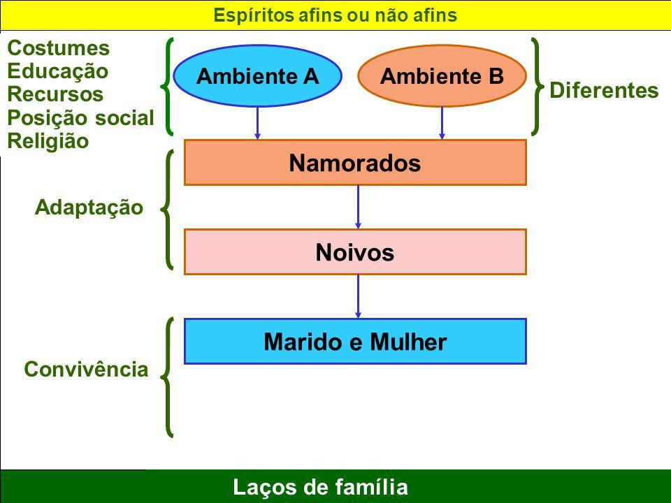 13 Laços de família Ambiente AAmbiente B Namorados Noivos Marido e Mulher Costumes Educação Recursos Posição social Religião Adaptação Convivência Dif