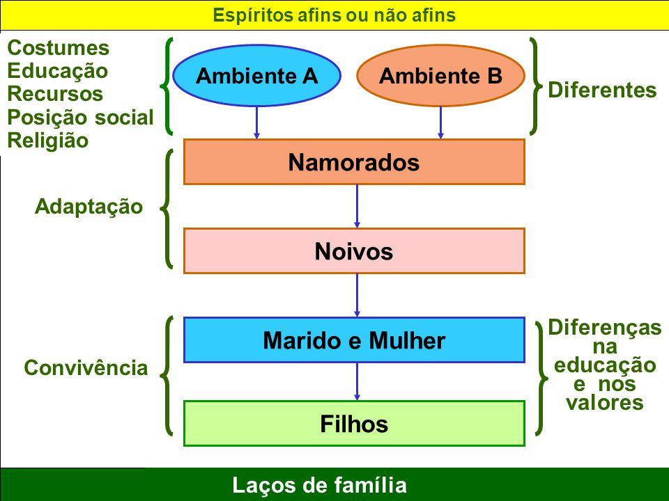 16 Laços de família Ambiente AAmbiente B Namorados Noivos Marido e Mulher Filhos Costumes Educação Recursos Posição social Religião Adaptação Convivên