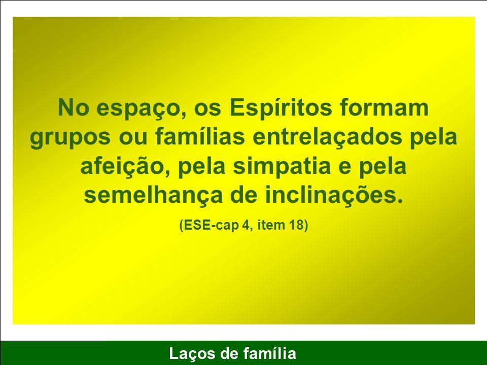 2 Laços de família No espaço, os Espíritos formam grupos ou famílias entrelaçados pela afeição, pela simpatia e pela semelhança de inclinações. (ESE-c