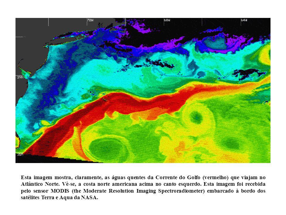 Esta imagem mostra, claramente, as águas quentes da Corrente do Golfo (vermelho) que viajam no Atlântico Norte. Vê-se, a costa norte americana acima n