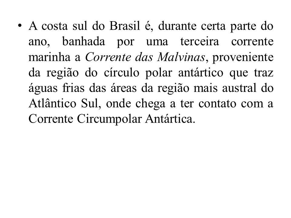 A costa sul do Brasil é, durante certa parte do ano, banhada por uma terceira corrente marinha a Corrente das Malvinas, proveniente da região do círcu
