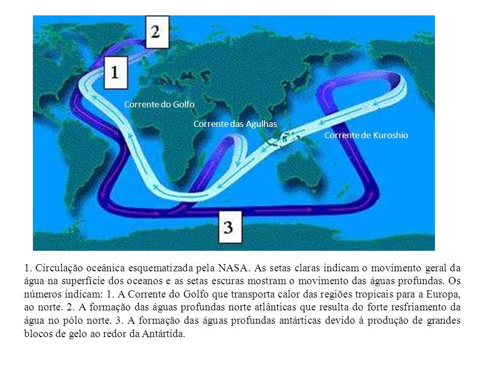 1. Circulação oceânica esquematizada pela NASA. As setas claras indicam o movimento geral da água na superfície dos oceanos e as setas escuras mostram