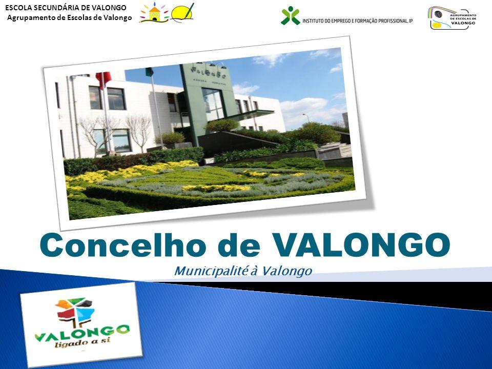 Concelho de VALONGO Municipalité à Valongo ESCOLA SECUNDÁRIA DE VALONGO Agrupamento de Escolas de Valongo
