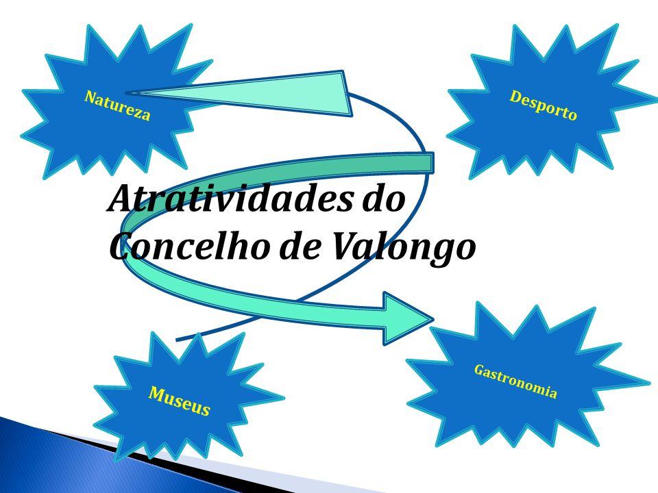NaturezaDesporto Atratividades do Concelho de Valongo Gastronomia Museus