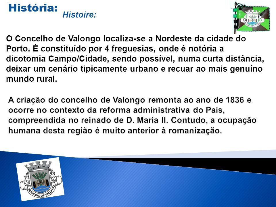 O Concelho de Valongo localiza-se a Nordeste da cidade do Porto. É constituído por 4 freguesias, onde é notória a dicotomia Campo/Cidade, sendo possív