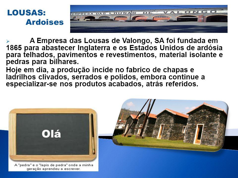 A Empresa das Lousas de Valongo, SA foi fundada em 1865 para abastecer Inglaterra e os Estados Unidos de ardósia para telhados, pavimentos e revestime